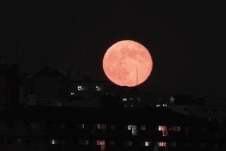 眠い 満月